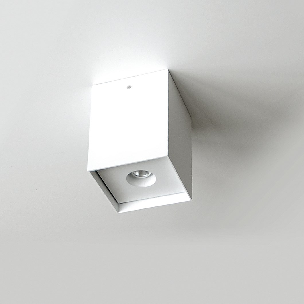 Flexalighting Arik 10 Ceiling Light| Image : 1