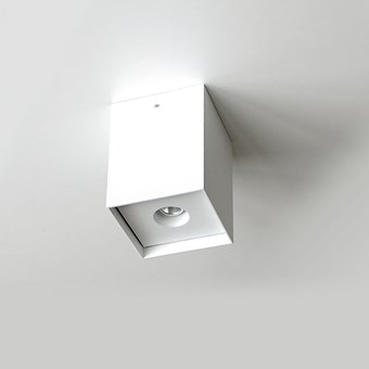 Flexalighting Arik 10 Ceiling Light