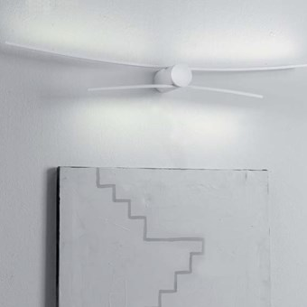 Icone Albatros Double Wall Light
