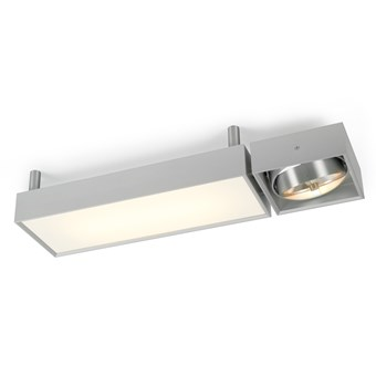 Trizo21 Izor 14 GT Wall/Ceiling Light