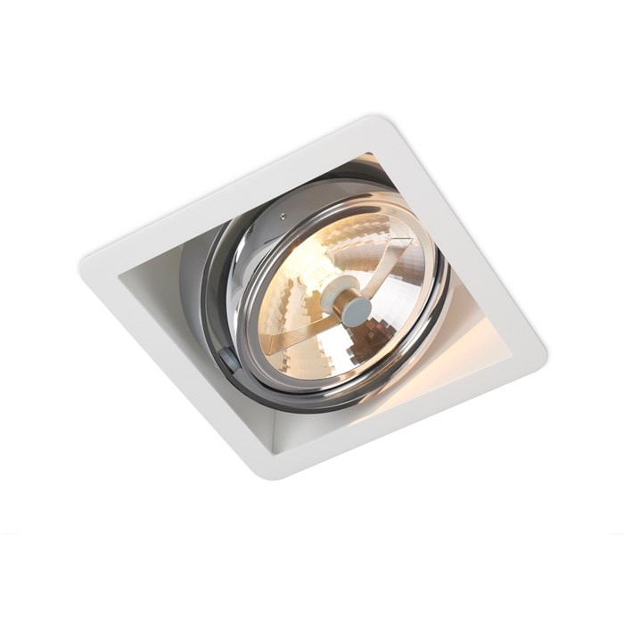 Trizo21 R110 Recessed Directional Downlight| Image : 1