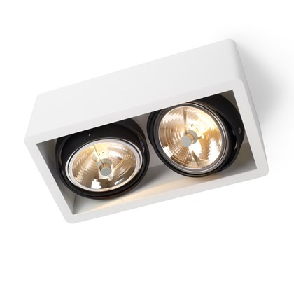 Trizo21 R111 Spot Light