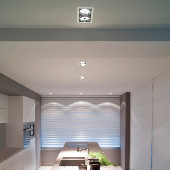 Trizo21 R111 Recessed Directional Downlight| Image:1
