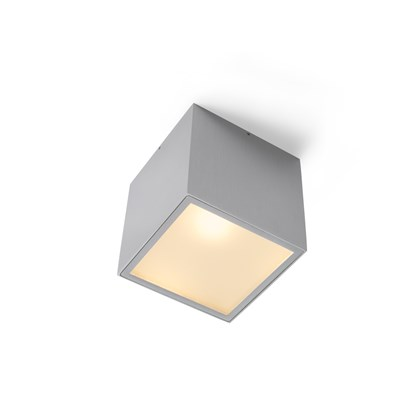 Trizo21 ZoP & ZoZoP Exterior Ceiling Light