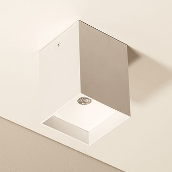 Flexalighting Arik 2 Ceiling Light