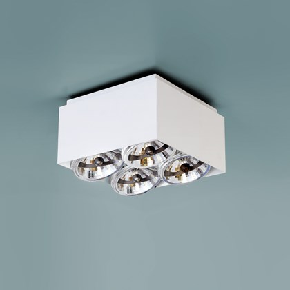 Nemo Compact Ceiling Light