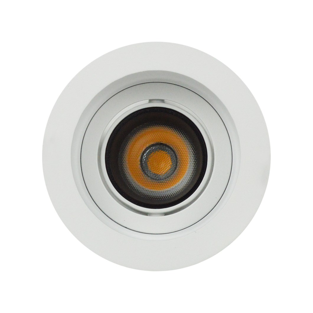 Straight on view DLD Andes 1-R True Colour CRI98 adjustable recessed downlight with round trim on white background