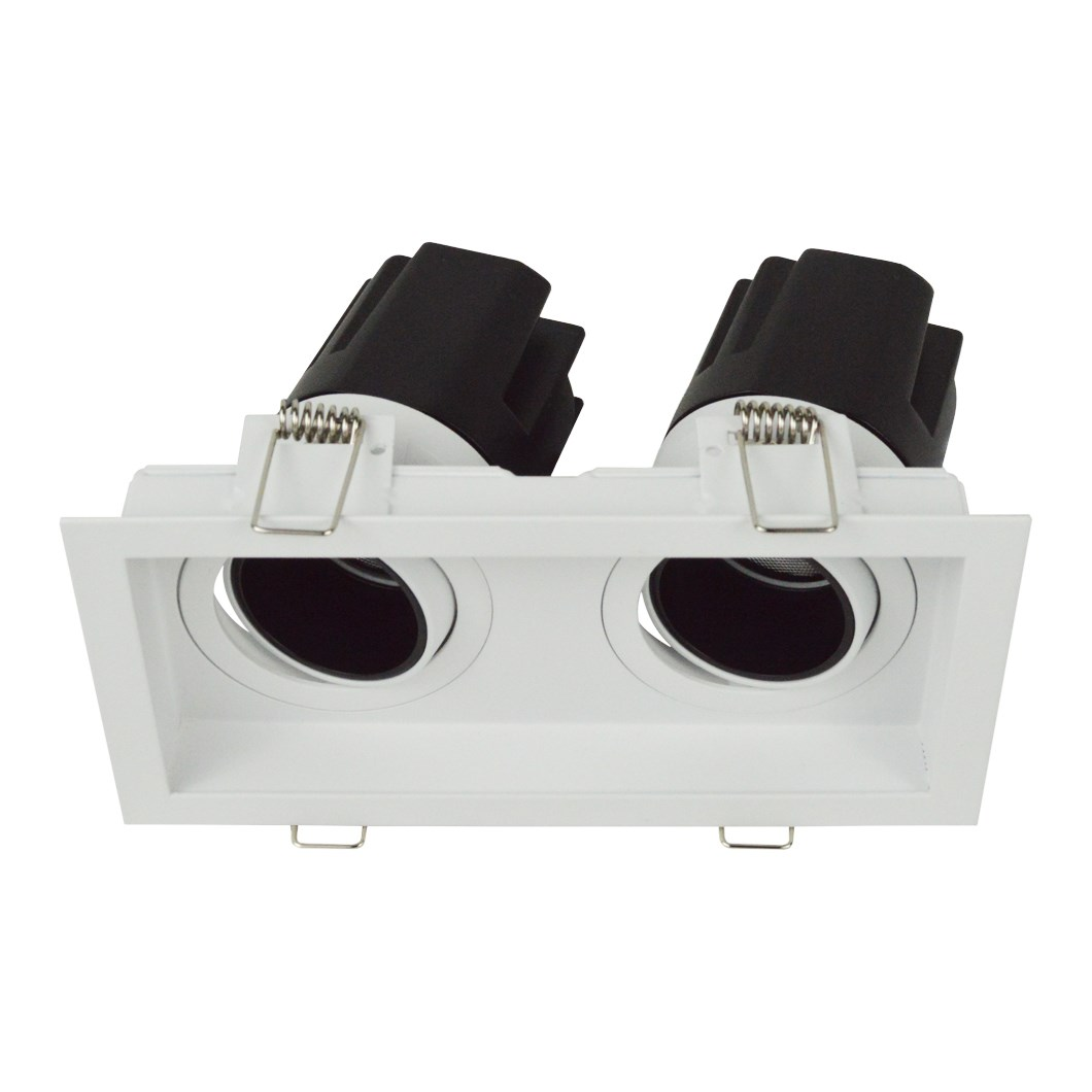 DLD Andes 2 True Colour CRI98 recessed adjustable recessed twin downlight with tilted light engines on white background
